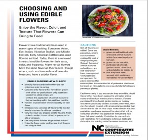 Cover photo for Choosing and Using Edible Flowers