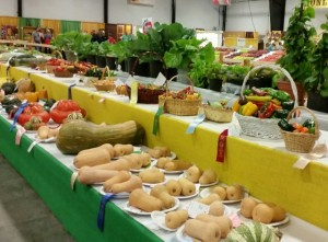 Horticulture Competition at NC State Fair