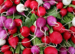 Cover photo for Chatham County Farmers' Markets Are Open!