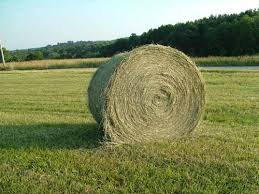 Cover photo for Chatham County Hay Directory