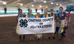 Cover photo for Chatham County 4-H Club Contact Flyer