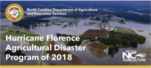 Cover photo for UPDATED 12-6-18 Hay and Pasture Crops Are Eligible for  Hurricane Florence Disaster Program