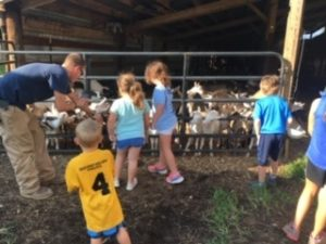 children viewing dairy goats