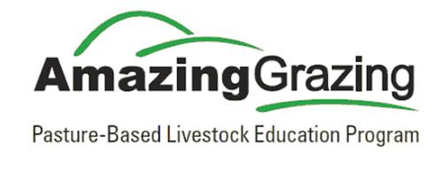Amazing Grace logo image