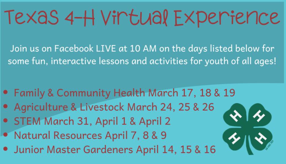 Texas 4-H Virtual Experience