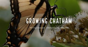 Cover photo for Growing Chatham, May 2020 Edition Is Now Available Online