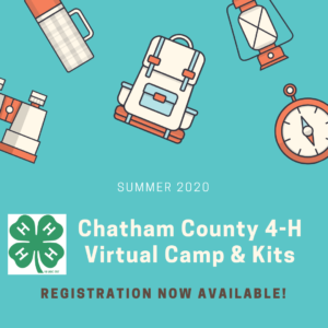 virtual camp logo