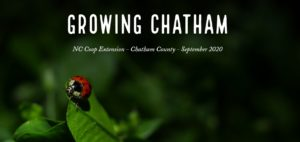 Cover photo for Don't Miss Growing Chatham!