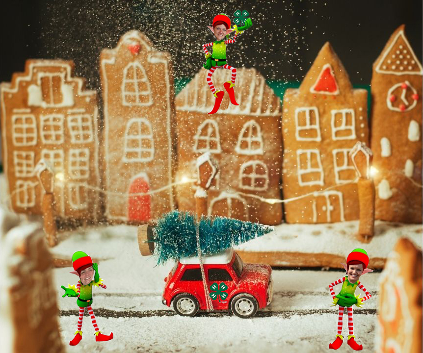 Elves and gingerbread houses