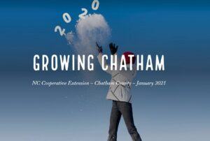 Cover photo for Bye Bye 2020! January's Growing Chatham Welcomes 2021, New Webinars and More!