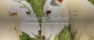 Cover photo for Introducing a New Addition to the Growing Chatham Newsletter, the Growing Chatham Podcast