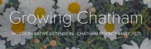 Cover photo for May 2021 Growing Chatham Newsletter and Podcast Are Available!